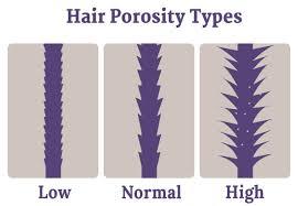 Hair Porosity Types